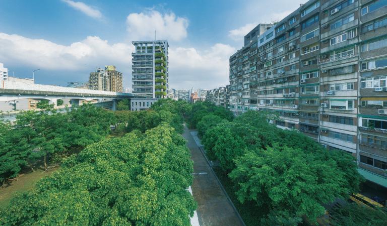 台北東區最奢侈的樹海綠廊… 公園林蔭景觀 3米6時尚藝所